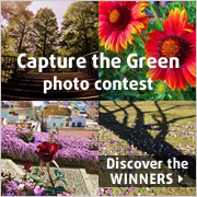 Winners of the photo contest