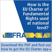 <Fundamental rights at national level>