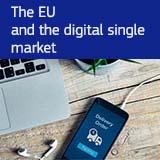 The EU and the Digital Single Market