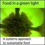 food_green_light