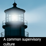 A common supervisory culture