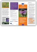 La iniciativa de la Unión Europea sobre los polinizadores